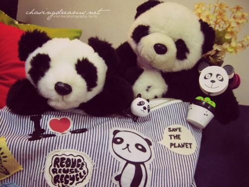 Pandas Will Rule The World