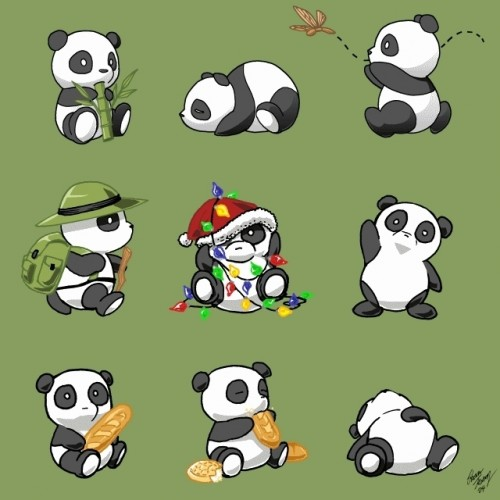 Which Panda Are You